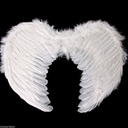 Angel Wings Wite