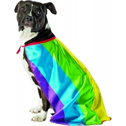 Rainbow Flag Pet Costume