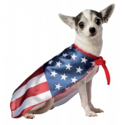USA Flag Pet Costume